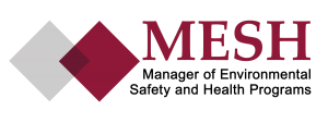 MESH_logo